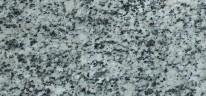 cinza-andorinha2